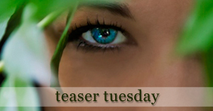 Teaser Tuesday | Untraceable by S.R. Johannes
