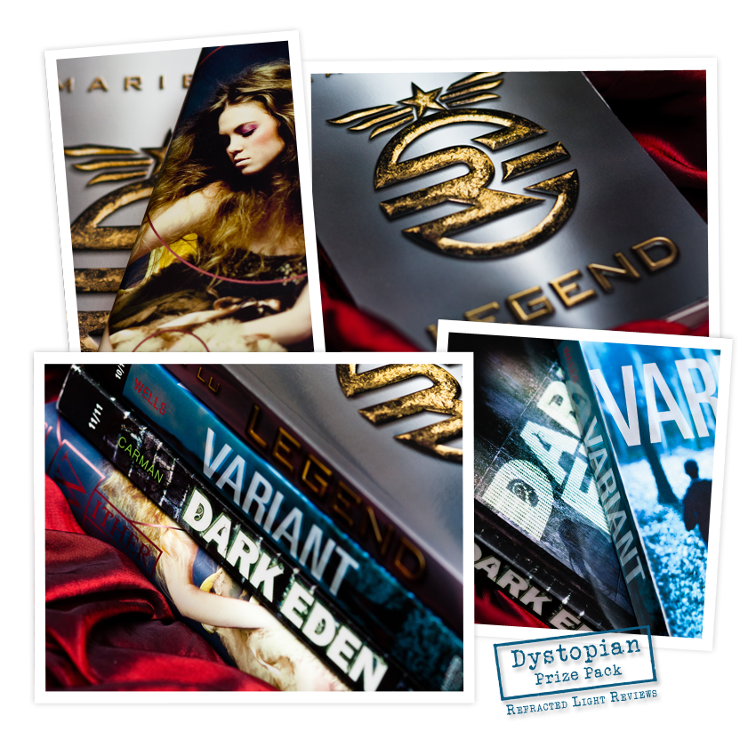 A Bookish Little Christmas Giveaway   Dystopian Prize Pack