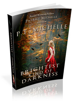 Blogoversary |  PT Michelle, Brightest Kind of Darkness, Ethan's POV, and a GIVEAWAY!