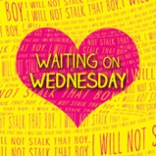 Waiting on Wednesday | The Summer I Became a Nerd, Geek Girl, OCD Love Story
