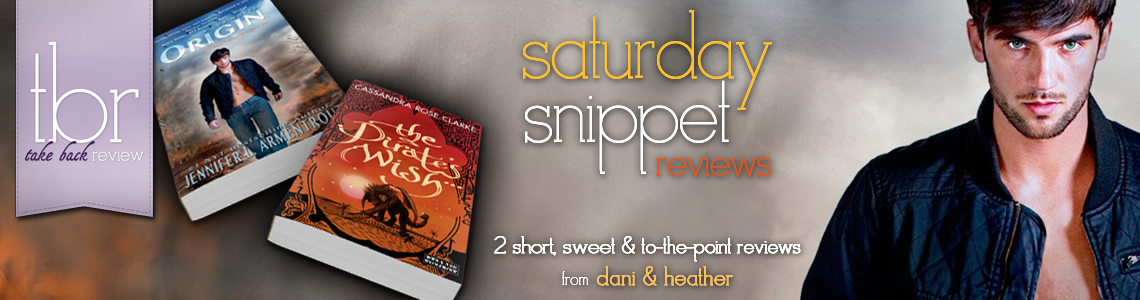 Saturday Snippet Reviews | The Pirate's Wish & Origin