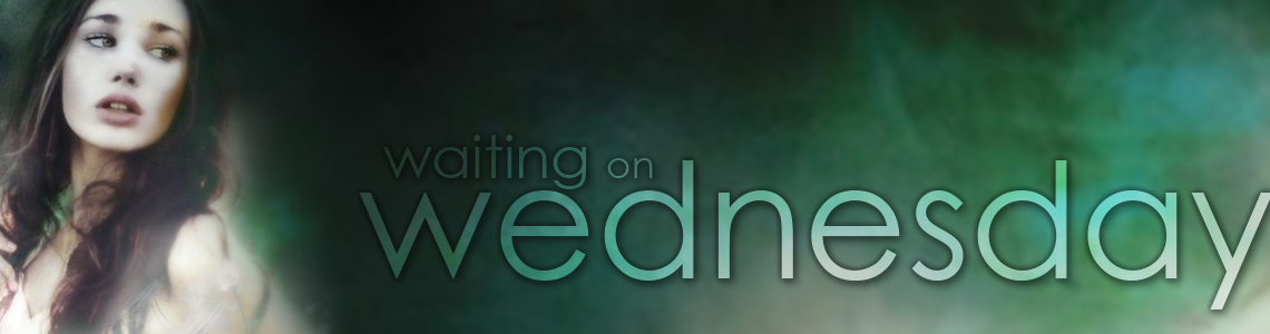 Waiting on Wednesday | The Wondrous and the Wicked by Page Morgan