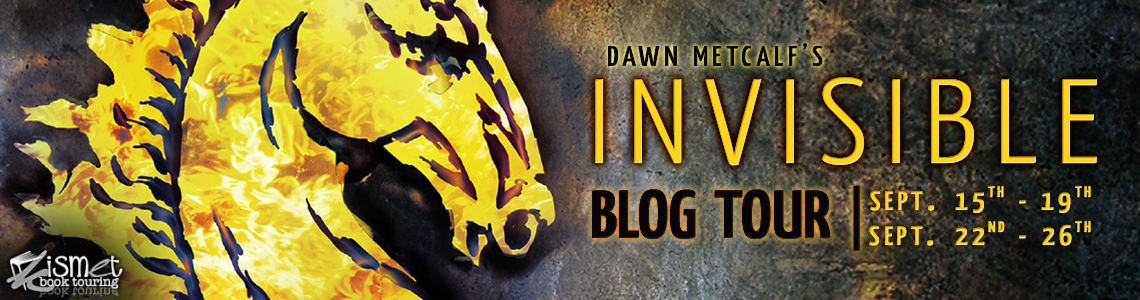 Blog Tour, Interview & Giveaway| Invisible by Dawn Metcalf